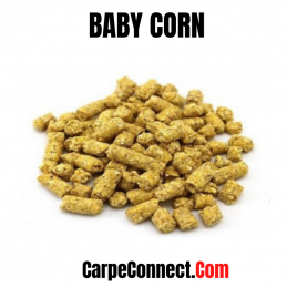 BABY CORN 2.5 KG