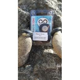 Magnet Stone x 3